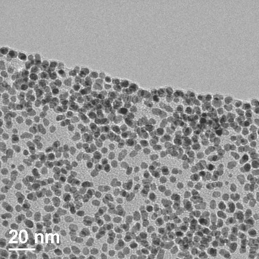 Iron Platinum nanoParticles